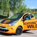 Car Wrapping Folien in Orange matt